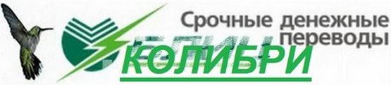 kolibri_perevody_srochno